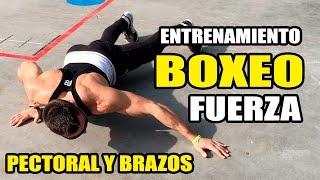 🥊 Entrenamiento Fisico BOXEO     FUERZA PECTORAL Y BRAZOS 🥊