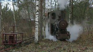 В Ленинградской области трое друзей запустили железную дорогу с самодельным паровозом.