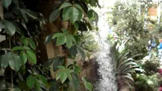 Wisley - RHS Garden - Glasshouse Waterfall - 2 5 2009