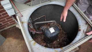 Professional Heat Pump Maintenance