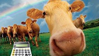 Сколько можно заработать в игре Ферма Соседи?