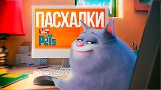 """Пасхалки """"Тайная жизнь домашних животных"""" [Домашние животные что-то чудят!]"""