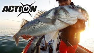 Pêche de gros bars au leurre souple