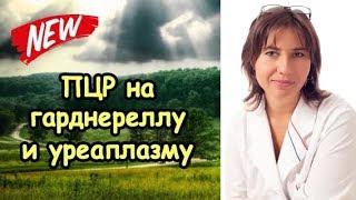 ПЦР на гарднереллу и уреаплазму положительная(http://doctormakarova.ru/ Есть вариант, что наша девушка здорова!, 2015-02-11T04:59:30.000Z)