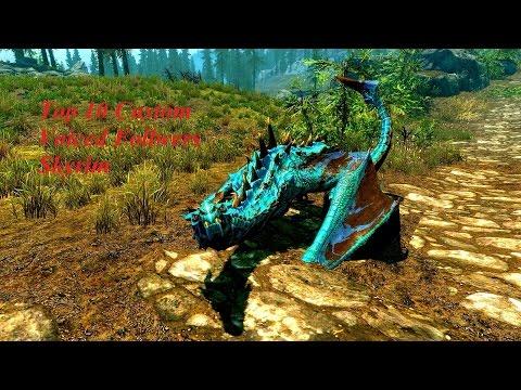 Skyrim-Top 10 custom Voiced Follower mods
