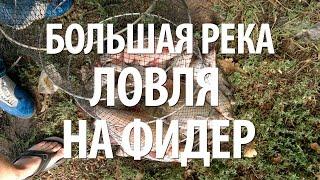 ФИДЕРНАЯ ЛОВЛЯ на КРУПНОЙ РЕКЕ(Ловля на фидер рыбы на большой реке. Советы по фидерной ловле от опытных рыболовов. ▻▻▻ Рыболовный интерне..., 2015-05-26T11:10:12.000Z)