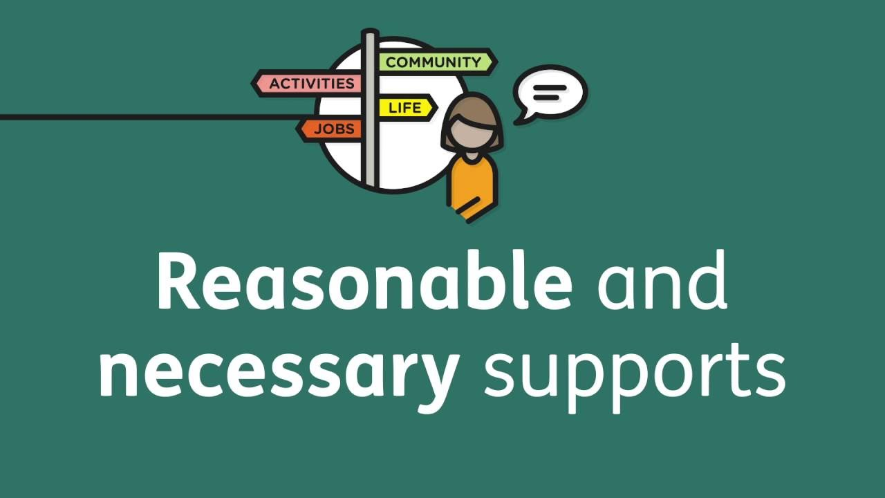 Reasonable and necessary supports