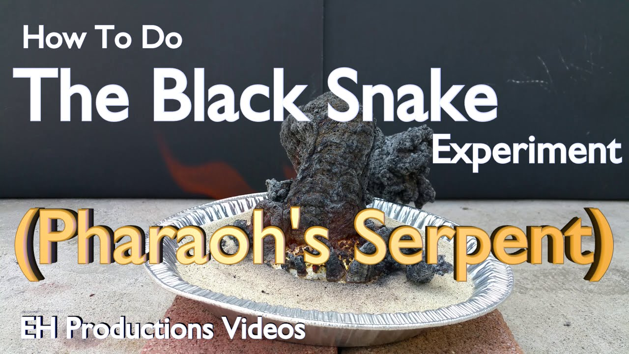 pharaoh s serpent safe version the black snake experiment youtube