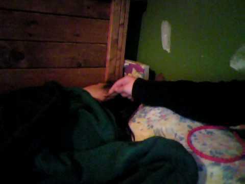 My friends little sister sleeping