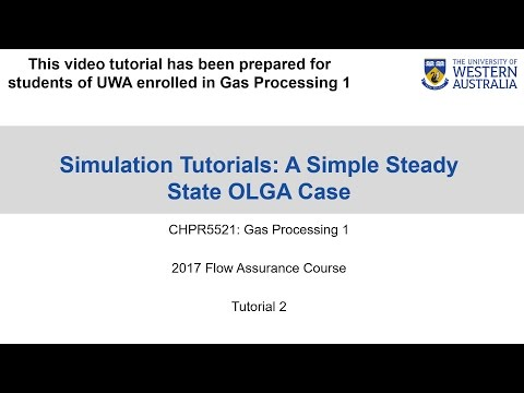 OLGA Tutorial 2 - A Simple Steady State OLGA Case