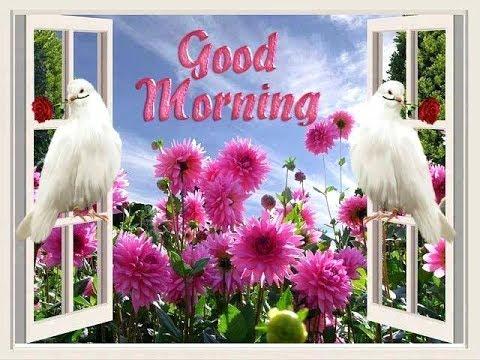 Good Morning Shayari, Video, Wallpaper, Image, Hindi, Photo, Song, Love, New, Download, Friends, Eng