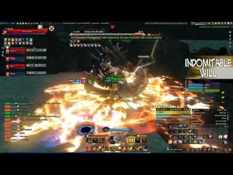 Best Tank Revelation Online