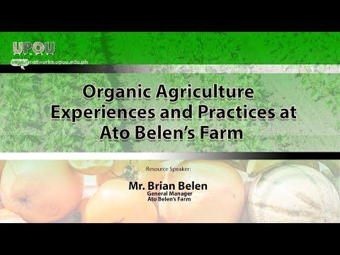 OA: Ato Belen's Farm