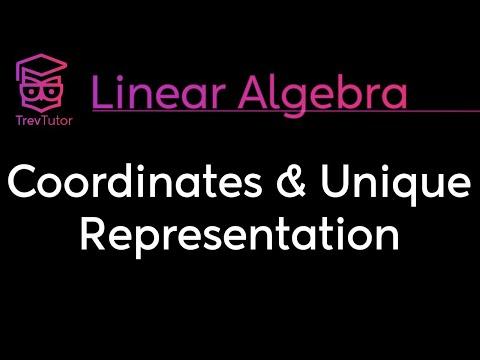 [Linear Algebra] Unique Representation Theorem And Coordinates