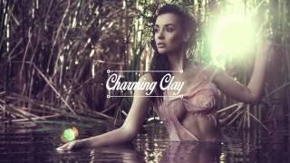 Solee - Zebra (Original Mix) | Charming Clay