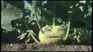 What is Kohlrabi