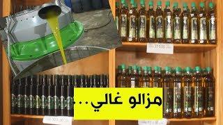 شلف ارتفاع اسعار زيت الزيتون رغم دعم الدولة