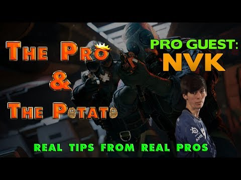 The Pro & The Potato || Real Tips from Real Pros ft. NVK