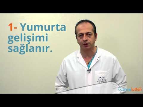 Prof. Dr. Fatih Şendağ Tüp Bebek Tedavisini Anlatıyor