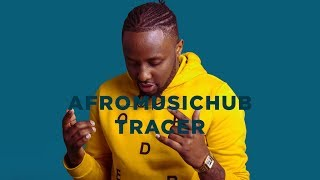 Tracer - Feeling You [An Afromusichub Show]