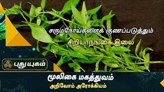 ரத்தத்தை சுத்திகரிக்கக்கூடிய சிறியாநங்கை இலை |அறிவோம் ஆரோக்கியம் | Puthuyugam TV