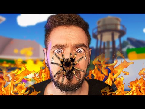 Don't watch this video if you hate spiders!
