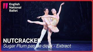 Nutcracker: Sugar Plum pas de deux (extract) | English National Ballet