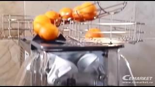 видео К чему снится апельсиновый сок?