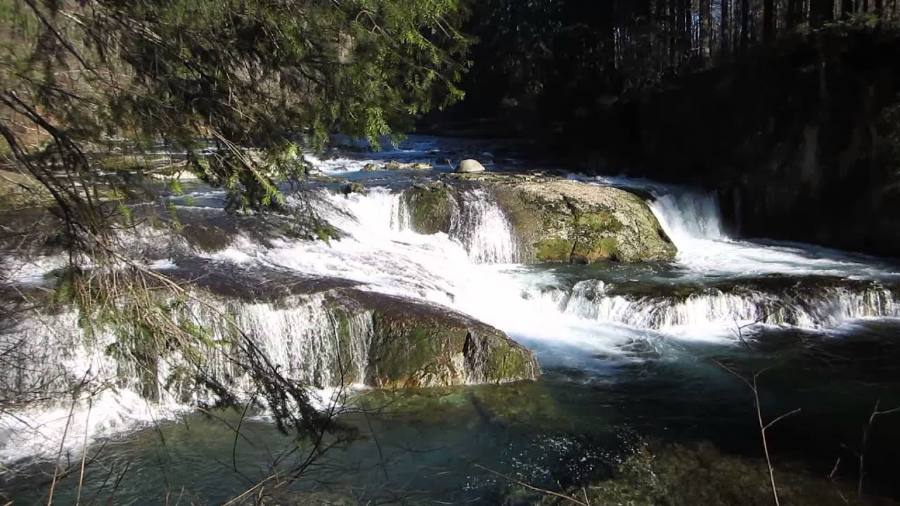 Logging Company Shuts Down Public Access to Naked Falls