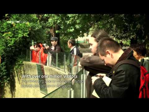 Citymotions - Hotel Sir Plantin Antwerpen