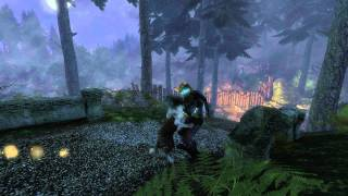 Fable 3 Dog stays injured PC bug.