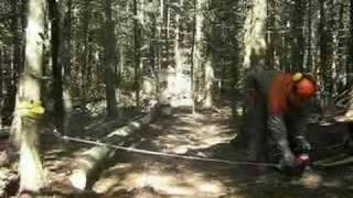 Winching down a hung-up tree by Portable Winch Co.