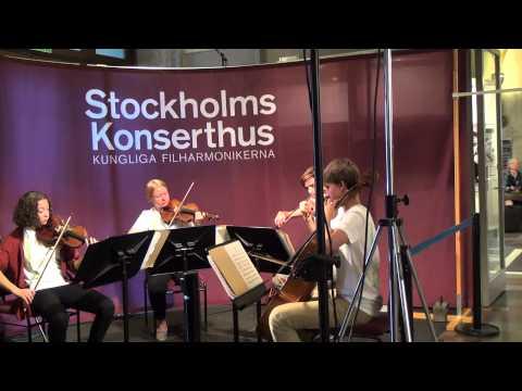 Stockholm Concert Hall 2