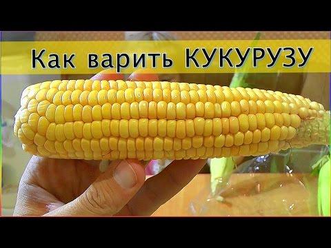 Кукурузная каша - польза и вред, калорийность