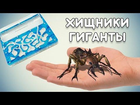 Вопрос: Какой вид муравьёв считается самым опасным и агрессивным?