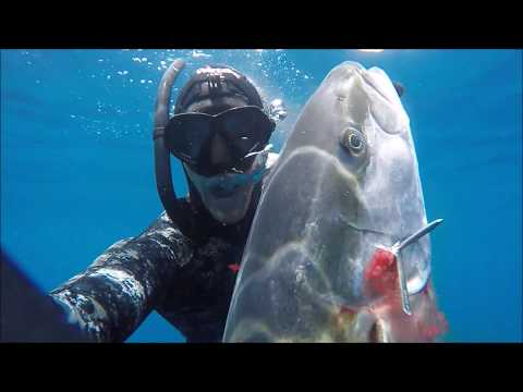 Spearfishing New Zealand   Big Kingfish