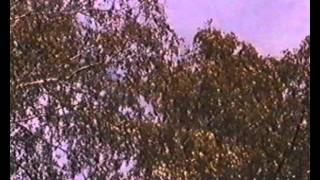Repeat youtube video Värien Lappia - Sodankylä suurten kairojen pitäjä 6.osa