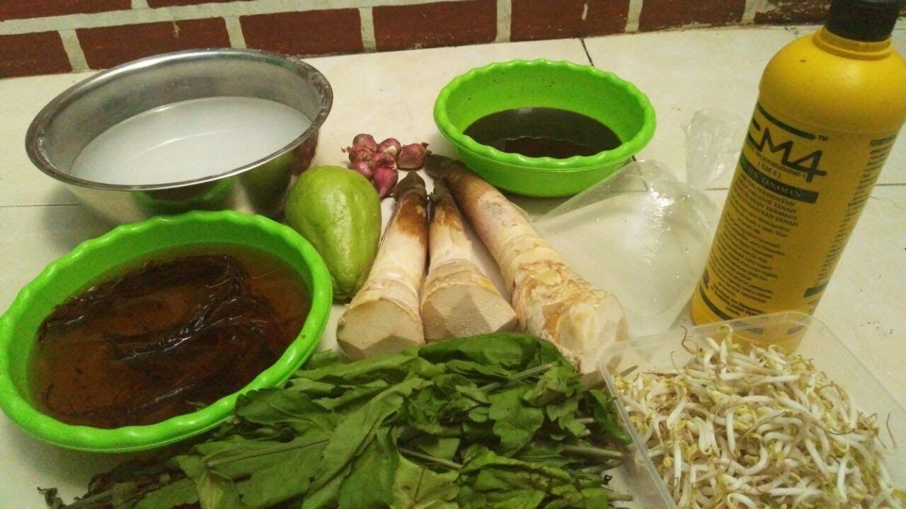 Paling Keren Gambar Akar Daun Batang Seledri Sketsa - Tea ...