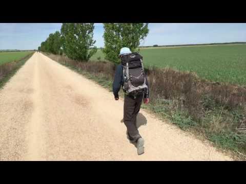 Walking el Camino: Carrion de Los Condos - Ledigos