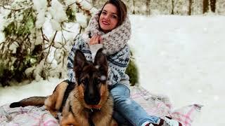 Живая фотография девушки и собаки в зимнем лесу