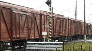 ВЛ80С-548 va ВЛ80С-533 O. uchrashuv p. Horobrovo