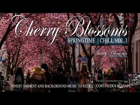 Cherry Blossoms Springtime Chill Vol.1 Kirschblüten Bonn 2018 Ambient And Background Music to Relax