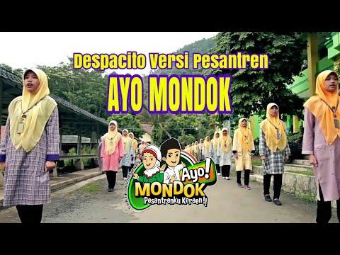Ayo Mondok (despacito cover)