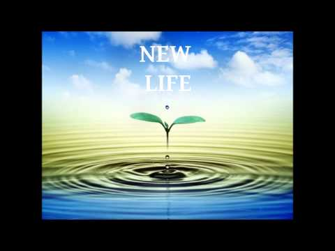 dj quicksilver new life. Скачать песню DJ Quicksilver - - New Life (CDM)