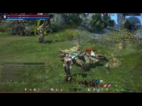 To Protect The Sorrow Tree Quest Tera