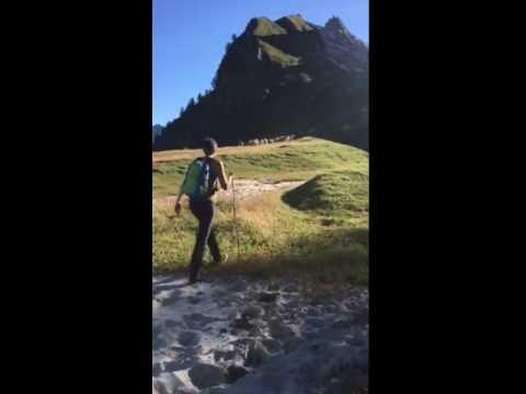 Transumanza - la partenza dall'alpe