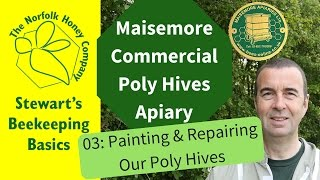 Painting Maisemore Poly Hives