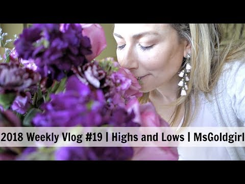 2018 Weekly Vlog #19 | Highs and Lows | MsGoldgirl