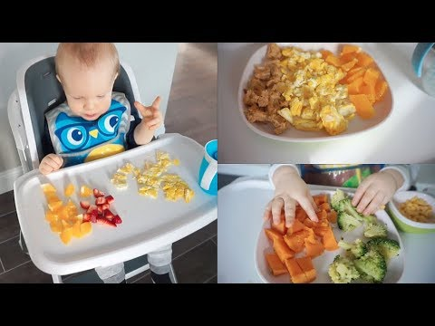 WHAT MY TODDLER EATS IN A WEEK | Breakfast, Lunch, & Dinner