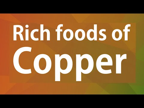 Rich foods of Copper - GOOD FOOD GOOD HEALTH - BENEFITS OF WELLNESS